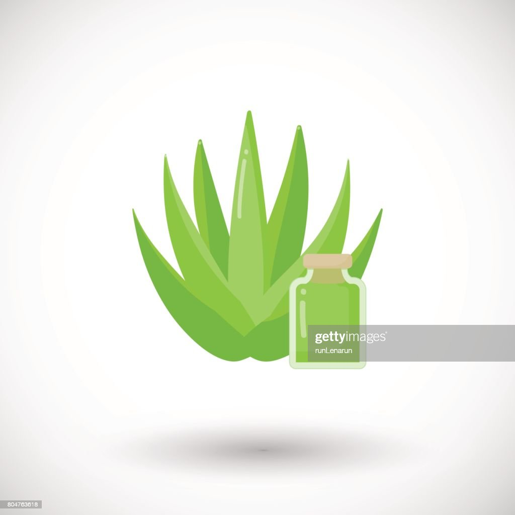 Aloe vera plant cosmetics vector flat icon