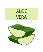 Aloe vera plant leaves cut isolated on white.