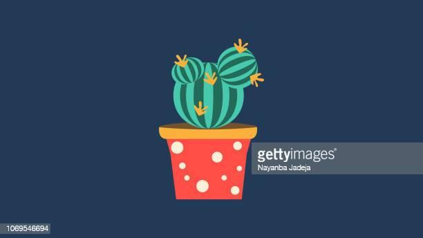 Aloe, vecteur de dessin animé de plantes de bébé de thorn