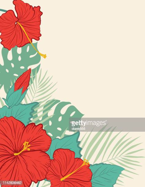 aloha hawaiian party invitation with hibiscus flowers - portulaca stock illustrations, clip art, cartoons, & icons
