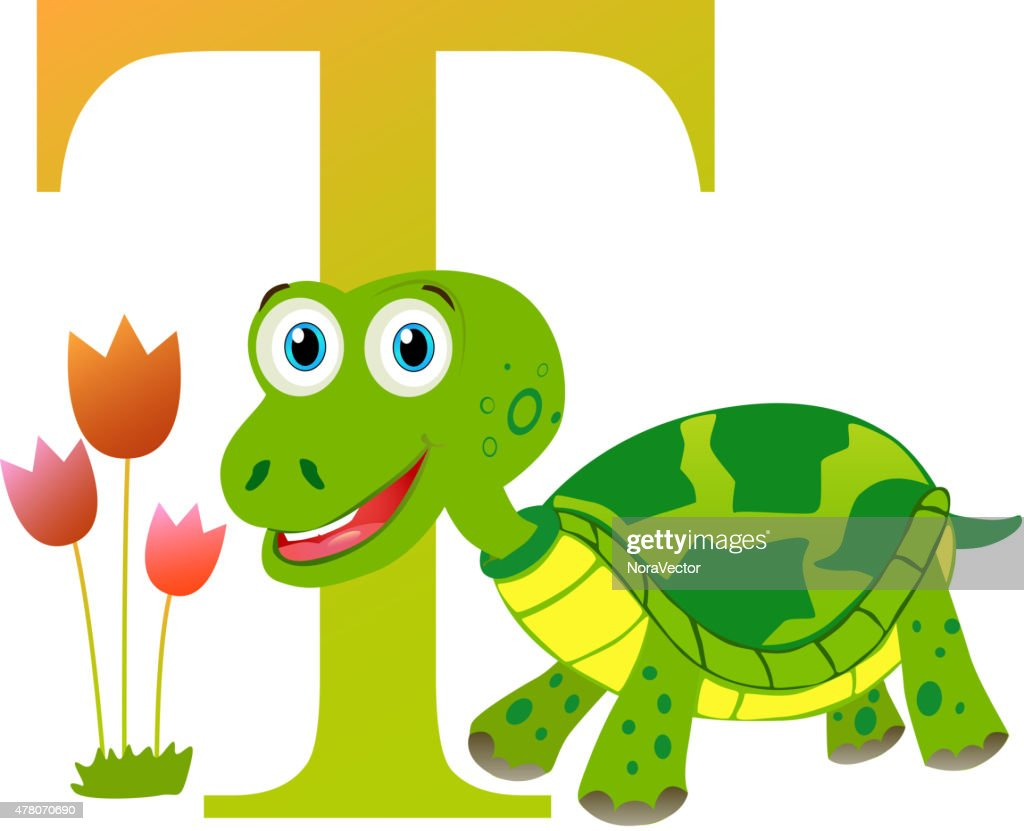 Alphabet for children: letter T is for Turtle