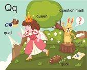 Alphabet.Q letter.quail,queen, quill,quoll,question mark