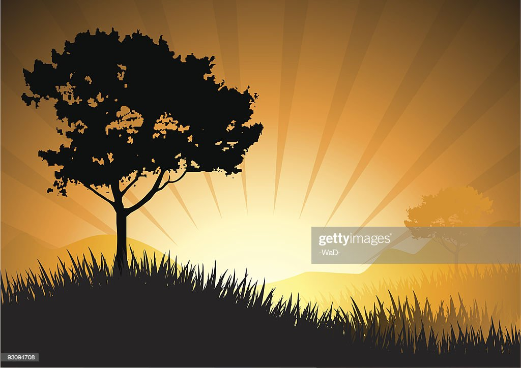 amazing natural sunset landscape with tree silhouette, vector illustration