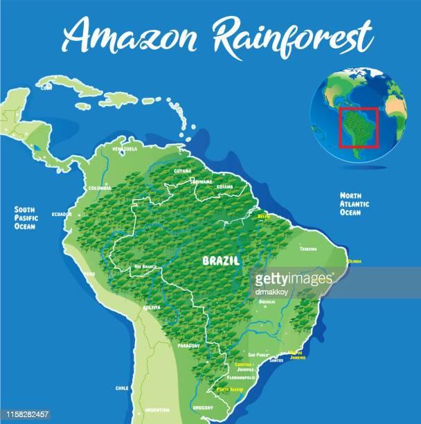 amazon rainforest - river amazon stock illustrations