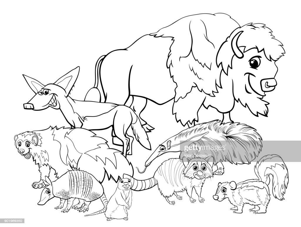 American animals cartoon coloring book