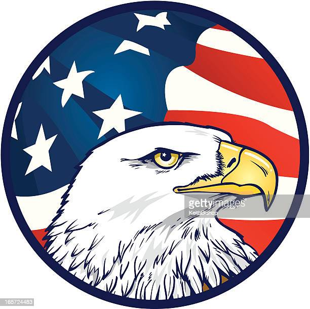 stockillustraties, clipart, cartoons en iconen met american eagle with flag background - bald eagle