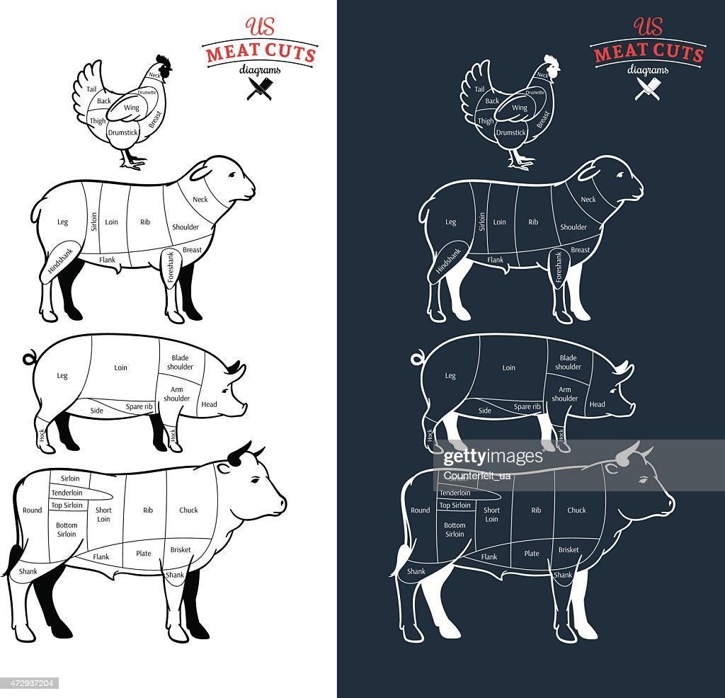 American (US) Meat Cuts Diagrams