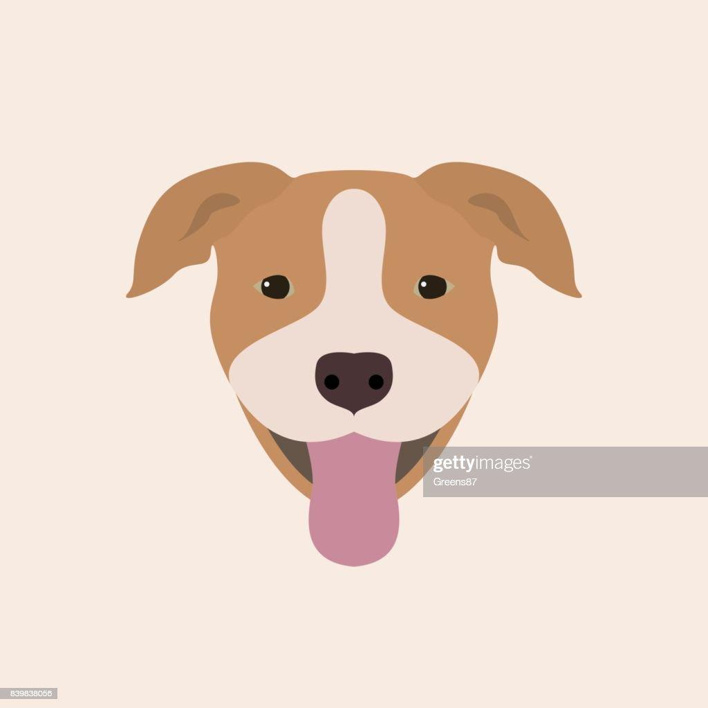 American Pitbull Terrier Portrait. Vector illustration portrait of Dog on white background.