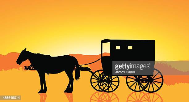 amish carriage and horse at sunset - horsedrawn stock illustrations, clip art, cartoons, & icons