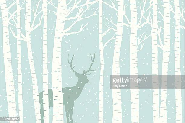 among the birch - blizzard stock illustrations