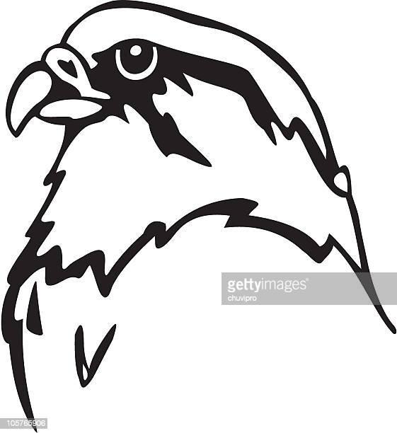 an animated black and white falcon - falcon bird stock illustrations, clip art, cartoons, & icons
