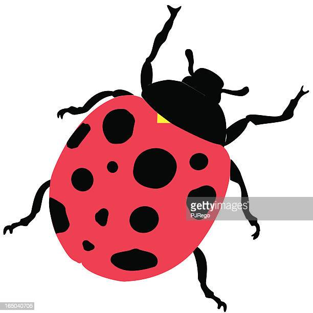 An animated picture of a ladybug hand drawn by an artist