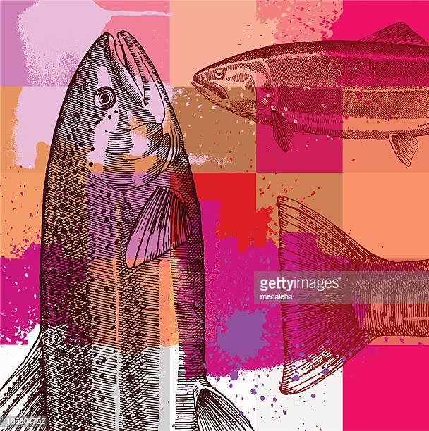 illustrations, cliparts, dessins animés et icônes de design grunge de pêche - saumon