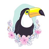 An illustration of a nice toucan in vector format. A cute toucan bird image for kid's education and fun in nursery and schools, and decoration purposes. Jungle animals collection