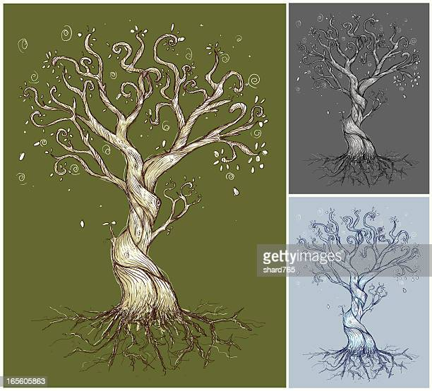 an illustration of three curvy trees - twisted stock illustrations, clip art, cartoons, & icons