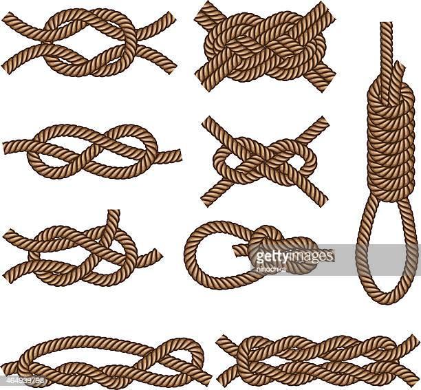 An illustration of various nautical knots