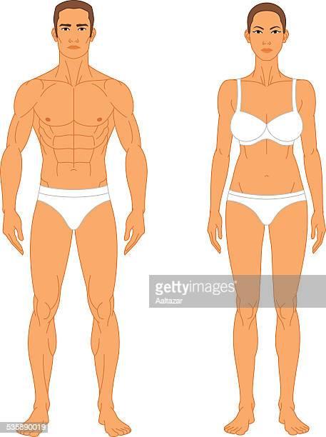 bildbanksillustrationer, clip art samt tecknat material och ikoner med anatomy - man and woman - naket