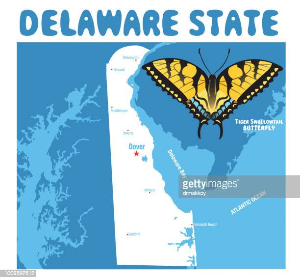 delaware map and delaware tiger butterfly - newark delaware stock illustrations, clip art, cartoons, & icons