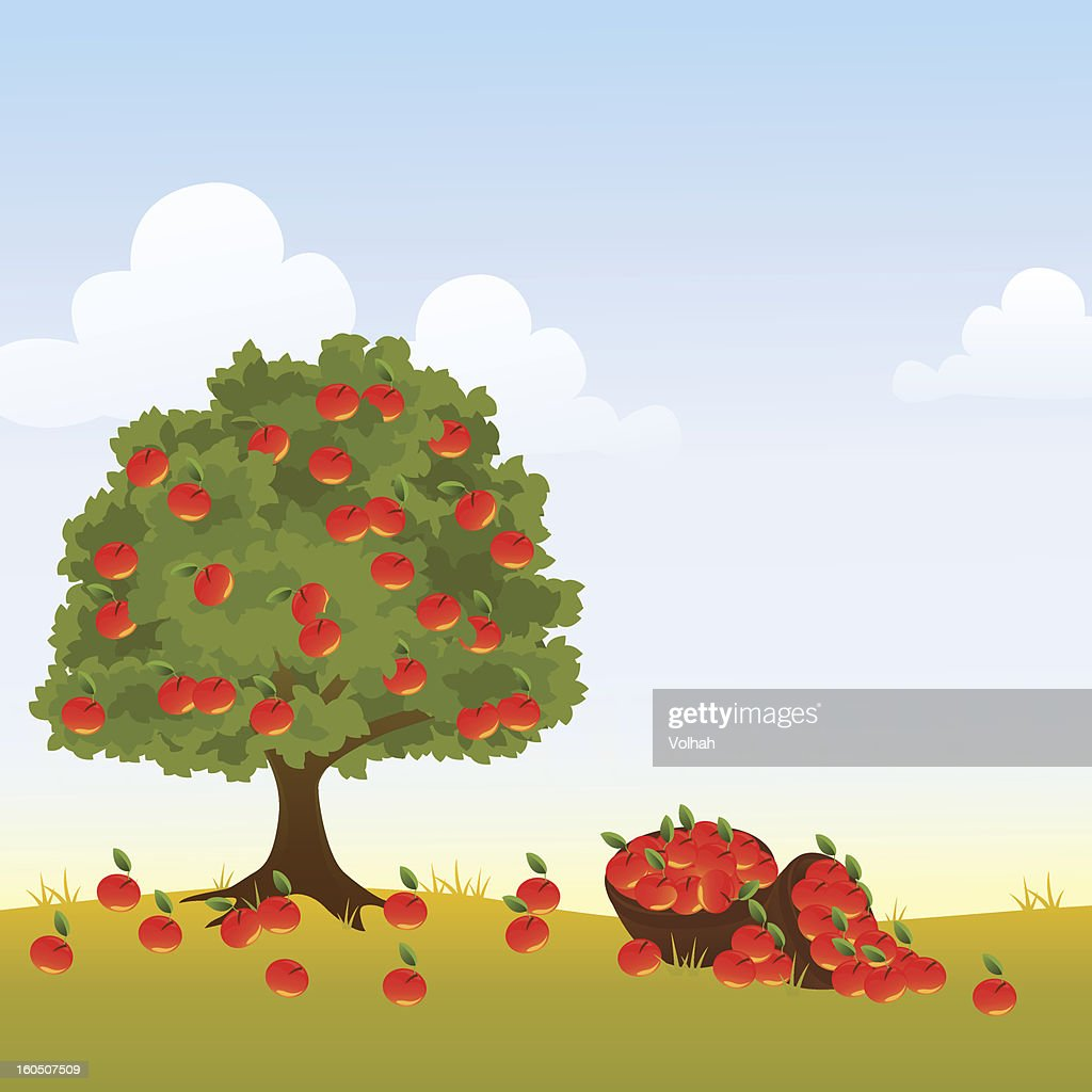 And illustration of an apple tree covered in apples