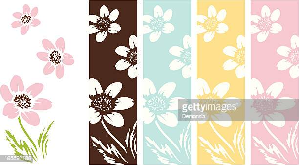 anemone flowers - ranunculus stock illustrations, clip art, cartoons, & icons