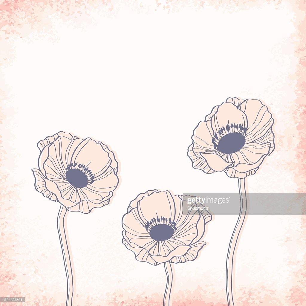 Anemone outline drawing. Elegant vector background