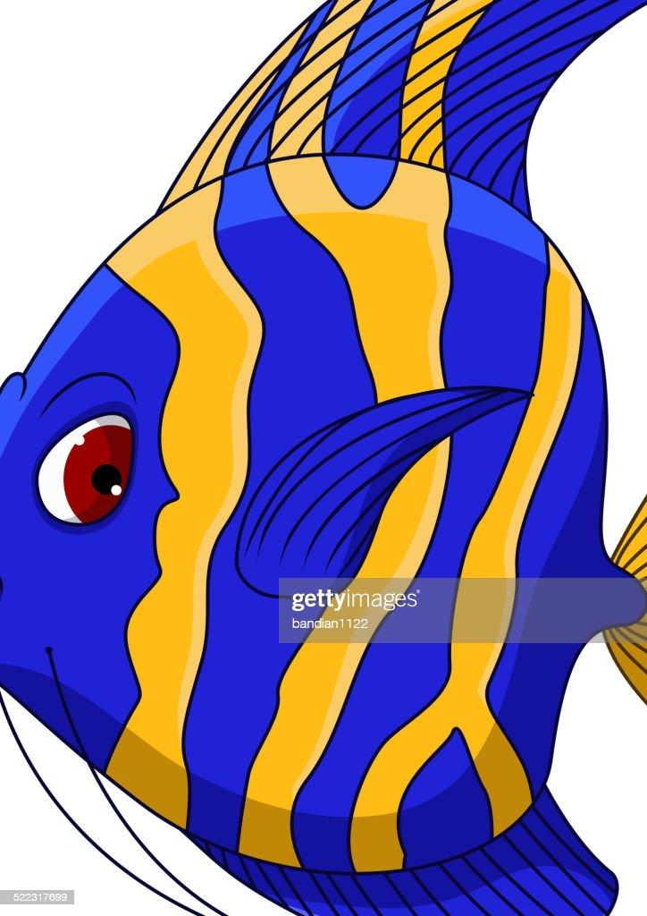 angel fish cartoon