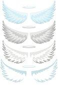 Angel wings, set
