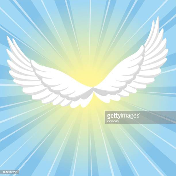 ilustraciones, imágenes clip art, dibujos animados e iconos de stock de alas de angel - alas desplegadas