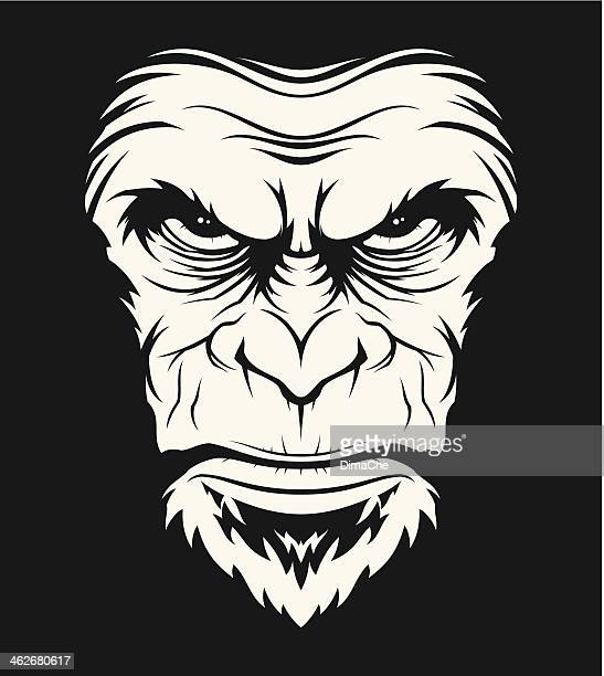 wütend ape head - chimpanzee stock-grafiken, -clipart, -cartoons und -symbole