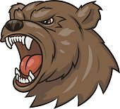 Angry bear head 3