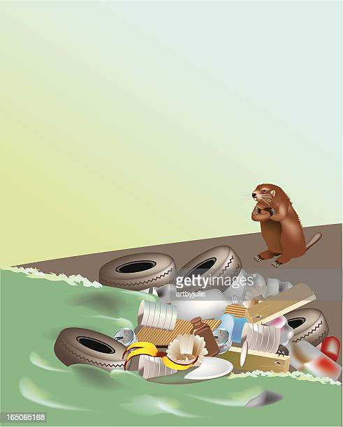 angry beaver - water pollution stock illustrations, clip art, cartoons, & icons