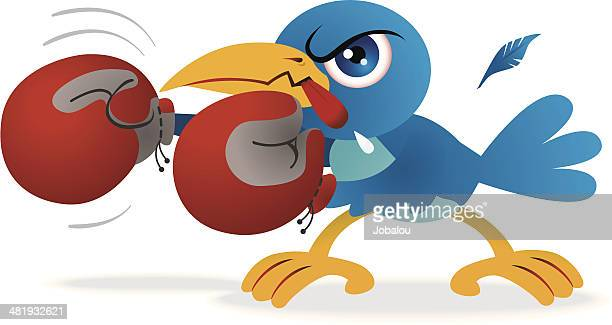 angry blue bird boxer - animal saliva stock illustrations, clip art, cartoons, & icons