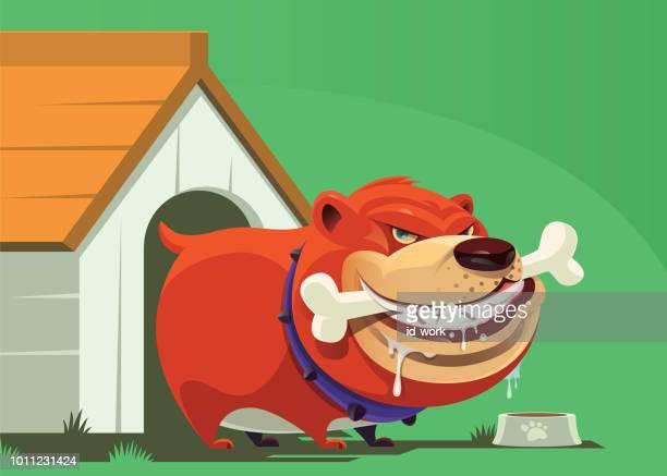 angry dog holding bone - dog eating stock illustrations, clip art, cartoons, & icons