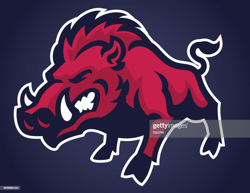 Angry of wild hog mascot