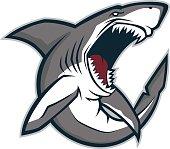 Angry shark mascot