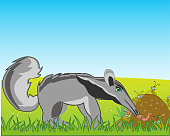 Animal anteater on glade eats ant in anthill