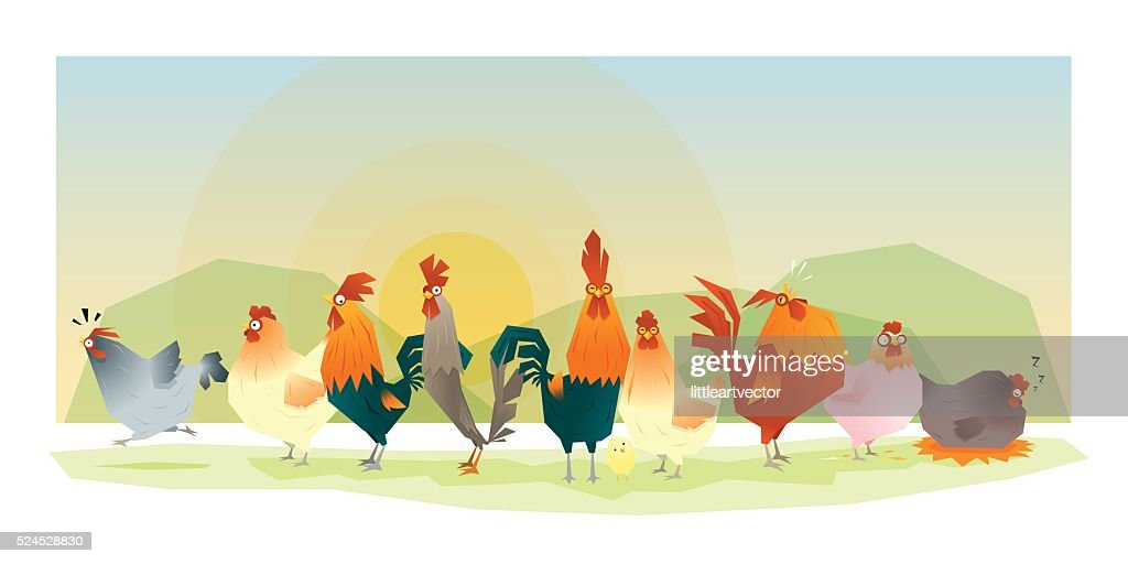 Animal background with chickens 1