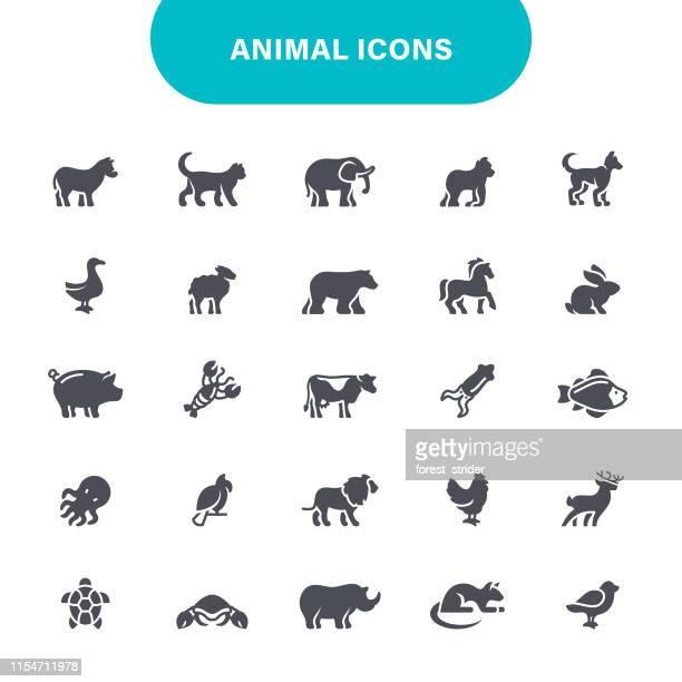 animal balck icons - calf stock illustrations, clip art, cartoons, & icons