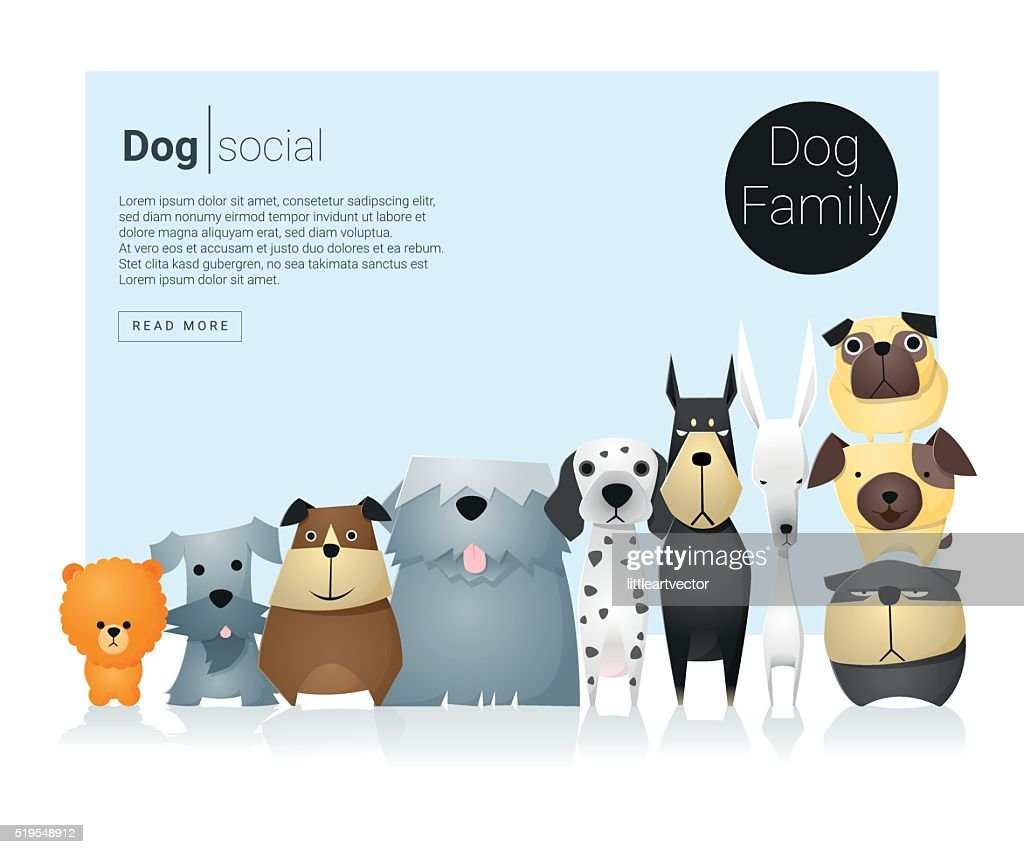 Animal banner with dogs for web design 9