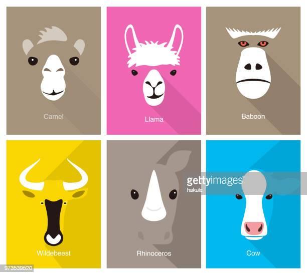 illustrations, cliparts, dessins animés et icônes de visage cartoon animaux, icône de la face plane, illustration vectorielle - faune