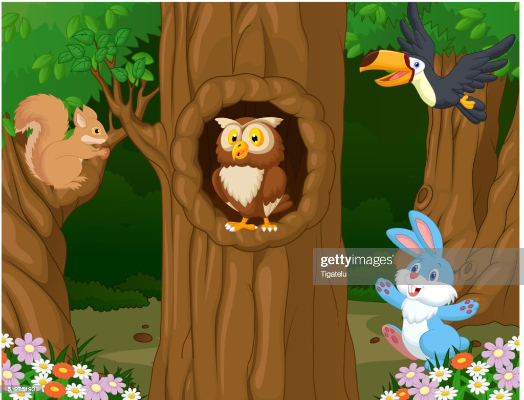 Animal cartoon in the forest