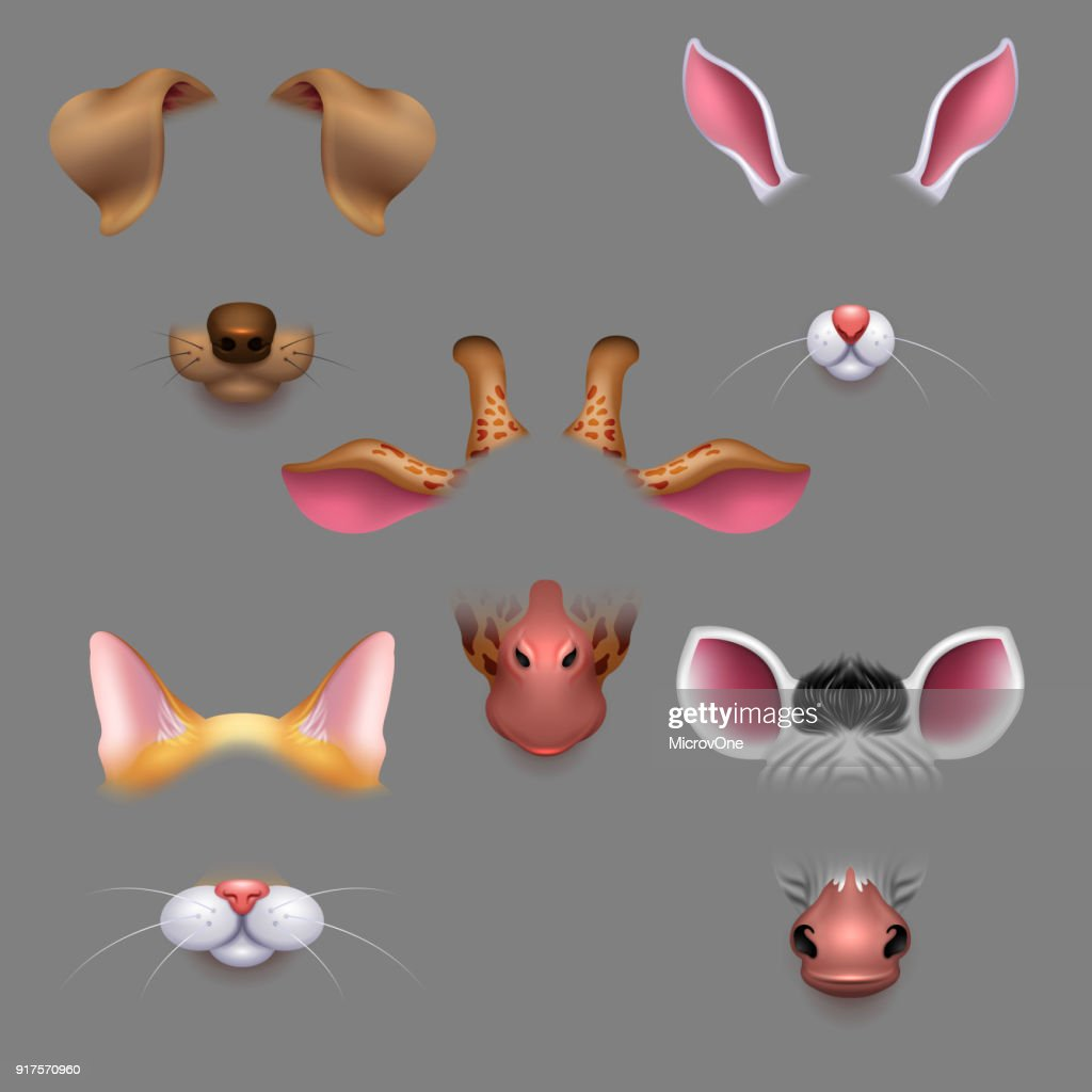 Animal ears and noses. Vector selfie photo filters animals faces masks