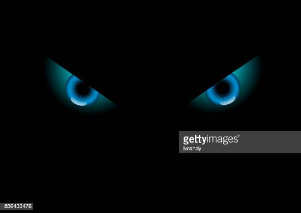 Animal eyes in dark