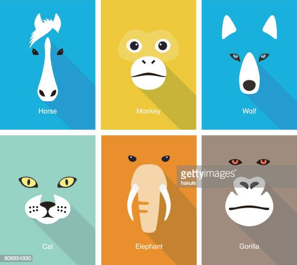 animal face flat icon set design, vector illustration