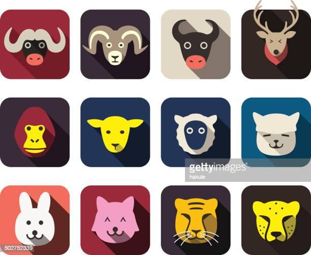Conjunto de iconos plana de cara animal