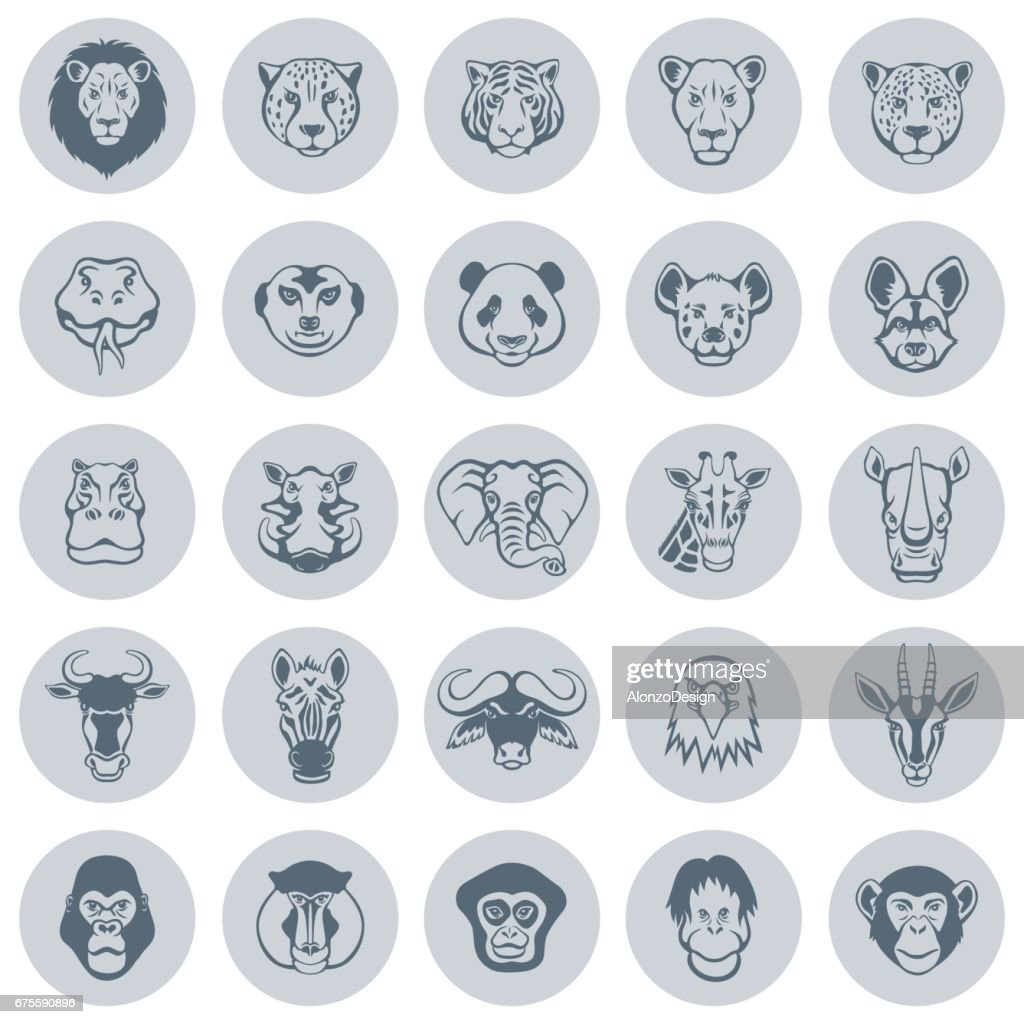 Animal Face Icons