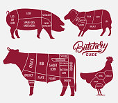 Animal farm set. Cut of beef, pork, lamb, chicken.