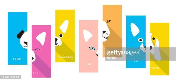 animal flat face icon, vector illustration - undomesticated cat stock illustrations