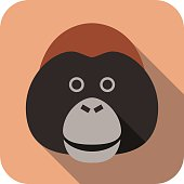 animal gorilla face flat icon