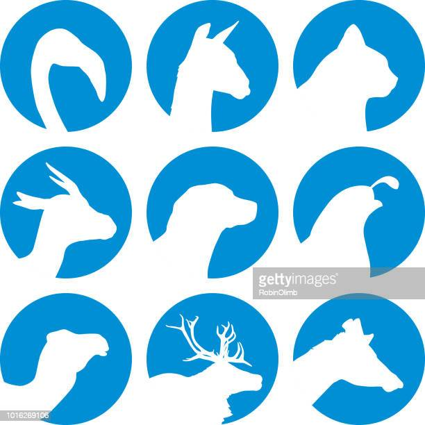 animal head icons - quail bird stock illustrations, clip art, cartoons, & icons